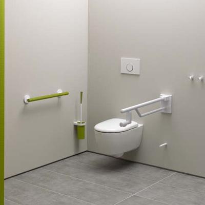 Erhöhtes Wand-WC mit Griff-Systemlösung